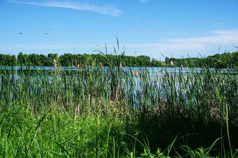 4 Dunton Lakes County Oark 6.11.17