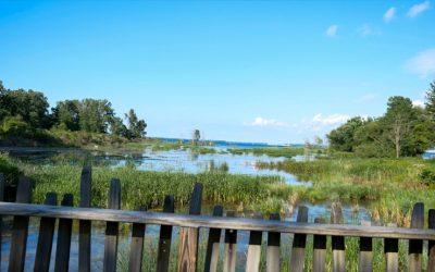 Great Lakes Seaway Trail & Vegan RV Cooking