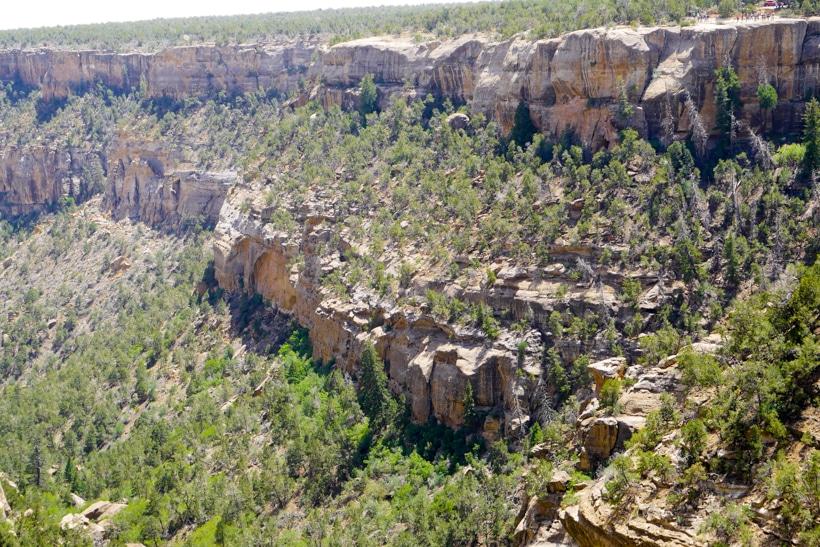 Mesa Verde Cliffs