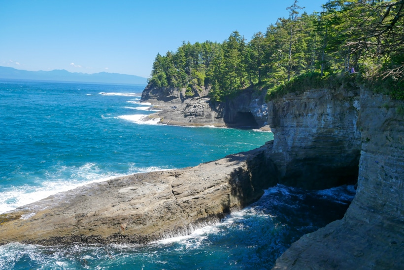 Cape Flattery Caves at end of Trail