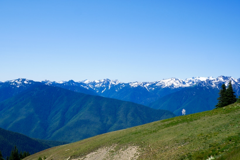 Hurricane Ridge 2