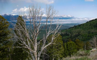 Sawtooth National Forest & Craters of the Moon
