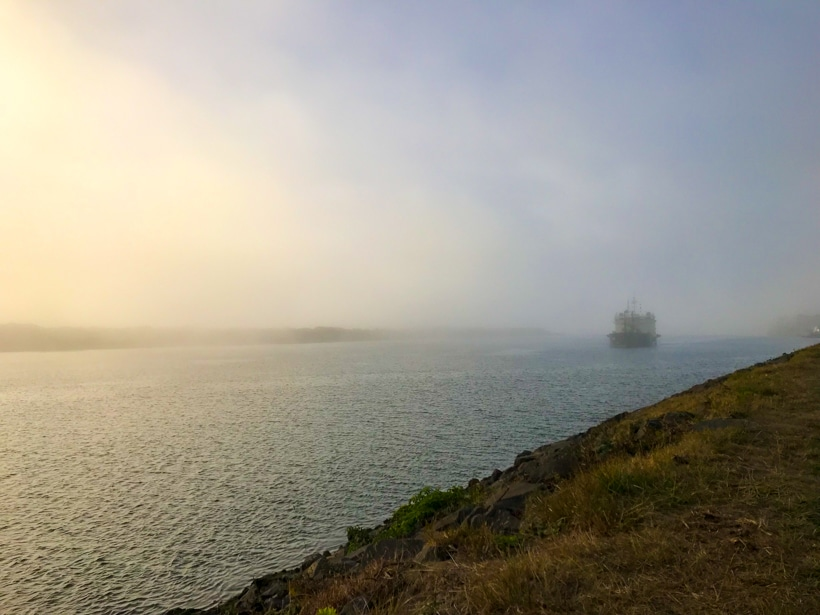 Florence Oregon Fog
