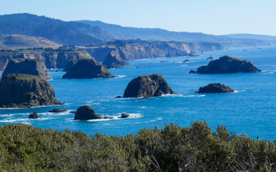 California Coast Road Trip / Pacific Coast Highway / Fort Bragg to San Francisco